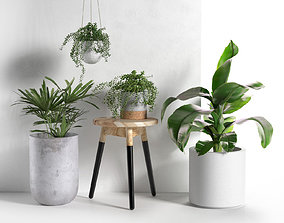 3D model Stool and Pots with Plants wood