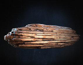 Layered Rock 3D model