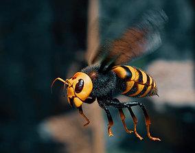 Hornet wasp 3D model