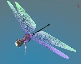 3D asset Dragonfly