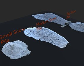 3D model Winter Pack