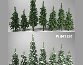 Fir Trees Set 3D model