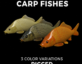 3D model Carp fish