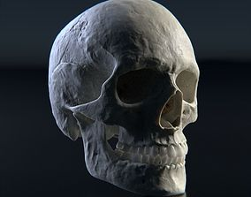 Photorealistic human skull 3D model death