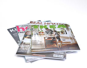 3D model Magazines LOW POLY