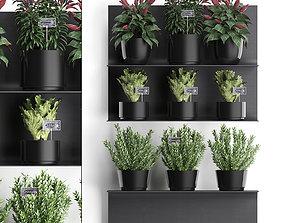 Plant set wall decor vertical garden 51 3D