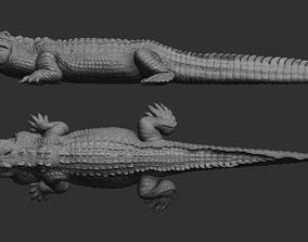 Hight detailed crocodile model