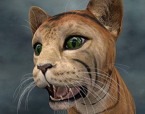 UVWC-012 Cat Textures Only 3D