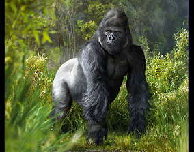 Gorilla 3D model animated