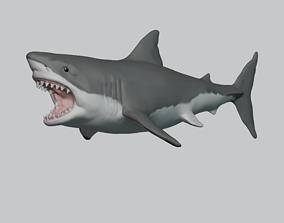 Great White Shark 3D print model marine