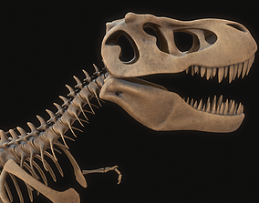 T-rex Skeleton fossil 3D model