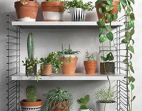 3D model Shelves with Plants