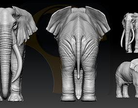 3D print model Elephant African