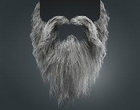 Beard RealTime 20 Version 1 Low Poly 3D asset