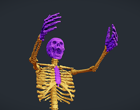 Voxel Skeleton 3D model