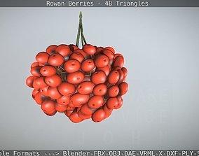 Rowan Berries Low-Poly 3D asset