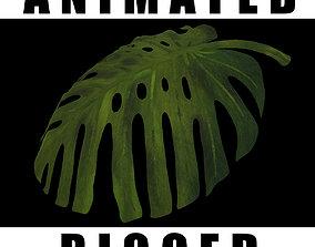 Monster Leaf 3D