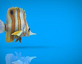 CORAL FISH 3D asset