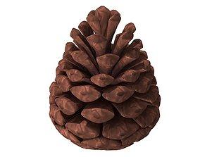 3D model pine cone