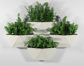 3D model Hexagon Wall Planter