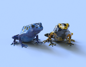 3D Poison Dart Frogs Package