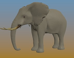 Elephant in some formats 3D