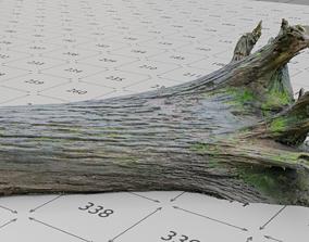 Old Rotten Fallen Tree 3D Scanned low-poly