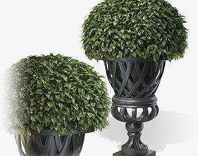 3D Planter Cypress Gardens Eichholt