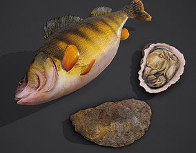 3D PBR Fish and Oyster
