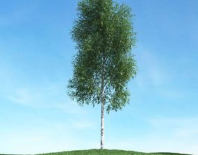 Thin Green Tree 3D model