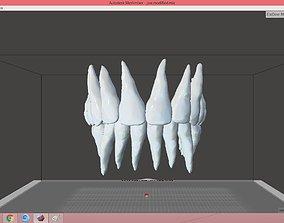 teeth 3D asset