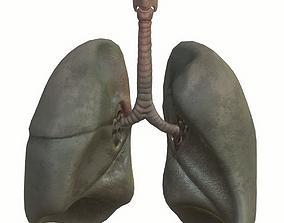 Lungs Smoker 3D asset