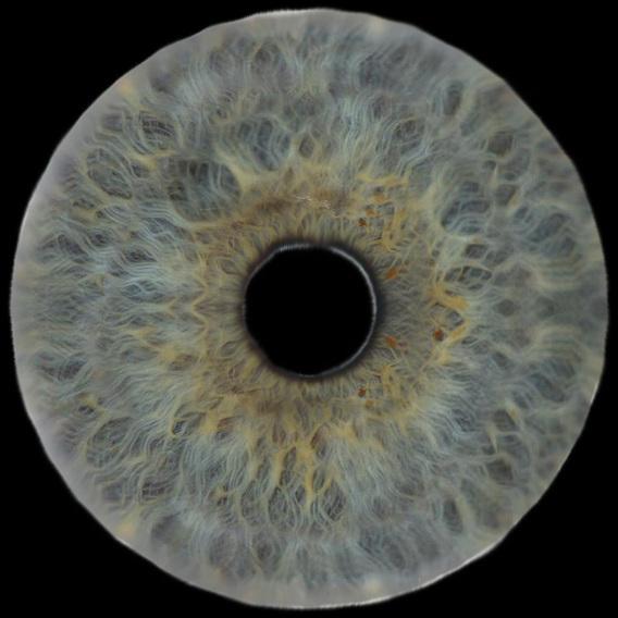 eye_02