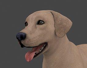 MLAB-022 Animated Dog 3D