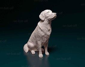 animal Golden retriever 3D print model