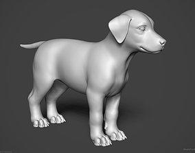3D Dog Puppy - Highpoly Sculpture