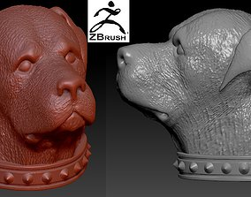 3D printable model Rottweiler head with collar