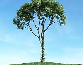 3D model Green Leaf Tree