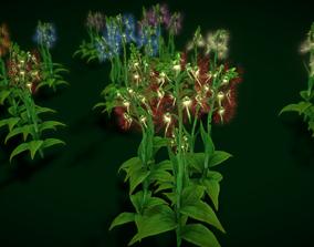 Flower Habenaria Medusa 3D model