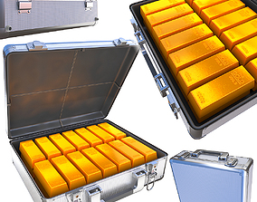 3D model Case with gold bars
