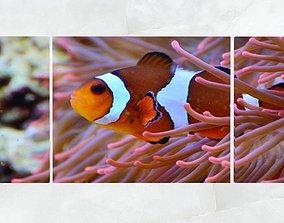 Triptych Wall Art Clownfish and Sea Anemone 3D asset