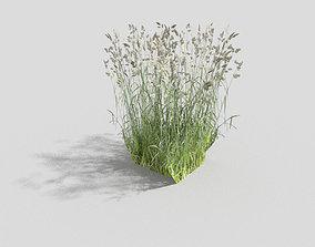 3D model low poly grass