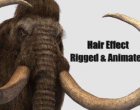 elephant mammoth tusk 3D asset