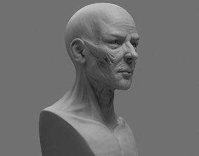portrait 3D print model Stylized Anatomy Face