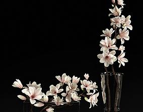 Magnolia 2 3D