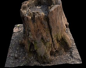 Old Stump 3D asset