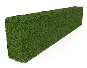 Boxwood Rectangle 3D model