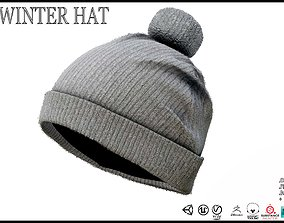 3D asset realtime Winter Hat