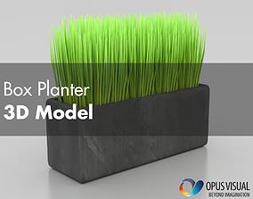 Box Planter 3D model