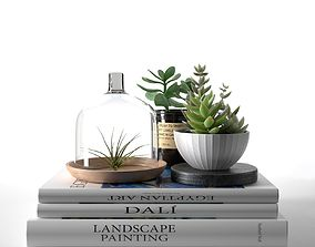 Books with Succulents and Air Plant 3D